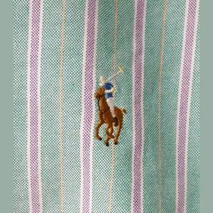 Ralph Lauren Oxford Shirt Medium Stripe NWT